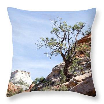 Zion National Park 1 Throw Pillow