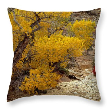 Zion National Park Autumn Throw Pillow