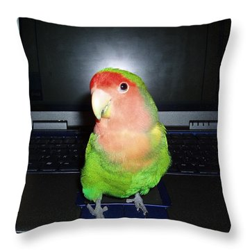 Zippy The Lovebird Throw Pillow by Joan Reese