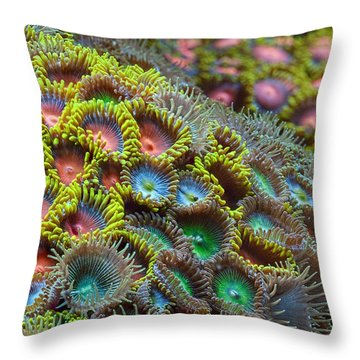 Zoanthids Throw Pillow