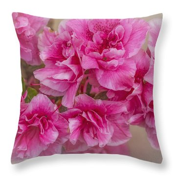 Throw Pillow featuring the photograph Zoe by Elaine Teague