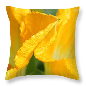 Zucchini Flowers In May Throw Pillow by Kume Bryant
