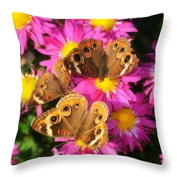 3 Beauty's Butterflies On Mum Flowers Throw Pillow by Peggy Franz