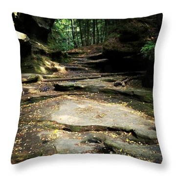 Ohio Throw Pillows