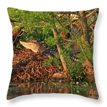 Throw Pillow featuring the photograph  Alligator On Nest by Luana K Perez
