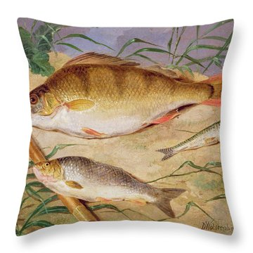 An Angler's Catch Of Coarse Fish Throw Pillow by D Wolstenholme