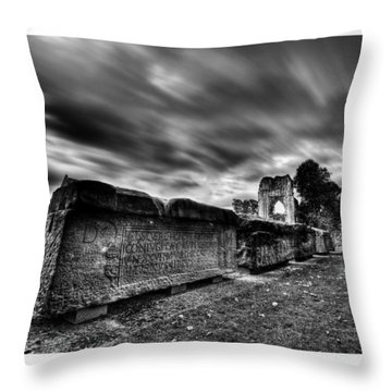 Ancient Lives Throw Pillow