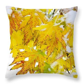 Autumn Snow Portrait Throw Pillow by James BO  Insogna