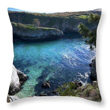 China Cove Throw Pillow by Mike Herdering