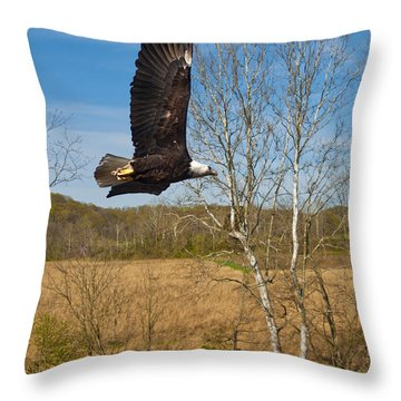Throw Pillow featuring the photograph  Eagle Circleing Her Nest by Randall Branham