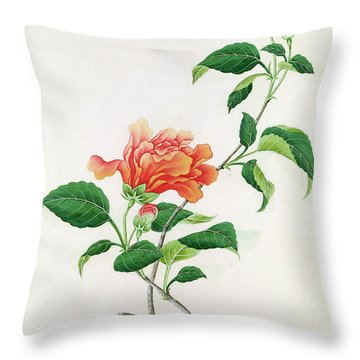 Hibiscus Throw Pillow by Georg Dionysius Ehret