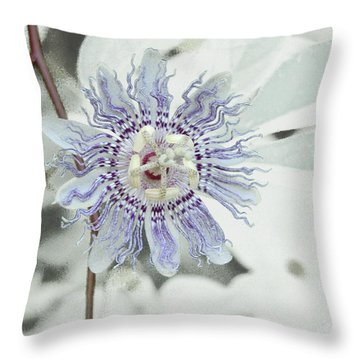 Passion Flower On White Throw Pillow by Tom Wurl