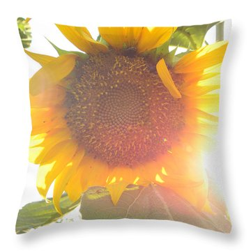 Throw Pillow featuring the photograph  Sun Flower by Nada Meeks