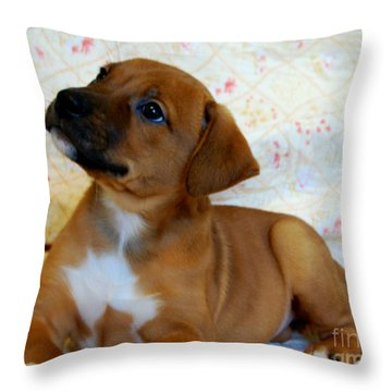 Throw Pillow featuring the photograph   Take Me Home Please by Peggy Franz