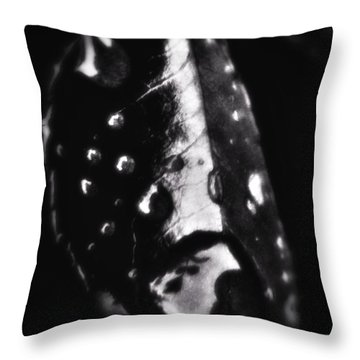 - Tears From Heaven -  Throw Pillow by Mimulux patricia no No