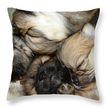 The Gang   Cute Puppies Throw Pillow by Peggy Franz