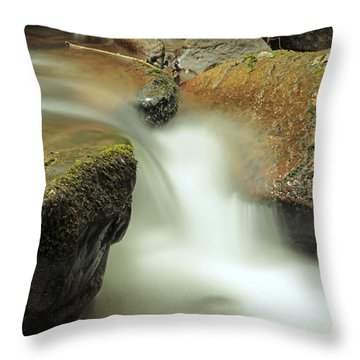 Torc Flow Throw Pillow