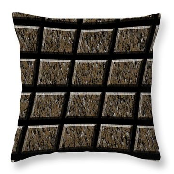 0577 Abstract Thought Throw Pillow by Chowdary V Arikatla