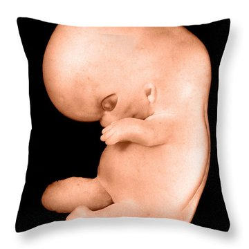 44 Day Old Human Embryo Throw Pillow by Omikron