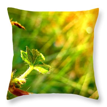 Throw Pillow featuring the photograph A New Morning by Debbie Portwood