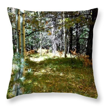 Throw Pillow featuring the photograph A Spot Of Sunlight by Fred Wilson
