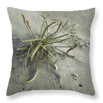 Throw Pillow featuring the photograph Adaptation by I'ina Van Lawick