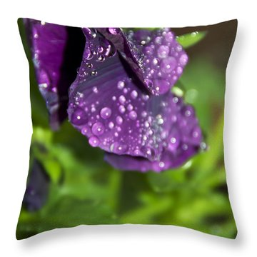 After Rain Throw Pillow by Svetlana Sewell
