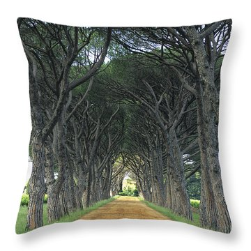 Alley . Provence Throw Pillow by Bernard Jaubert