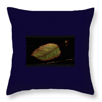 Throw Pillow featuring the photograph Changes by Marija Djedovic