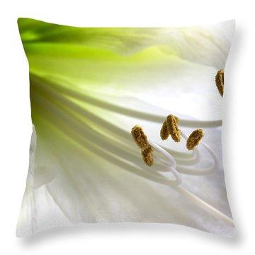 Amaryllis Throw Pillow by Jane Rix