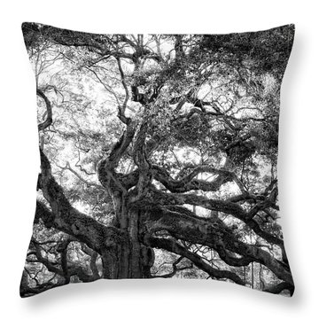 Angel Oak Throw Pillow by Lynne Jenkins