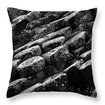 Another View Of The Giants Causeway Throw Pillow