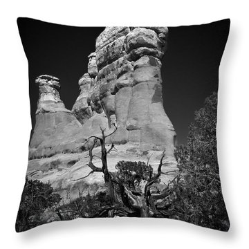 Arches National Park Bw Throw Pillow