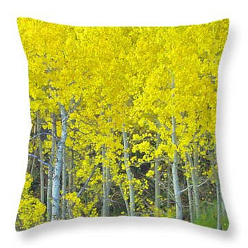 Aspen Power Throw Pillow