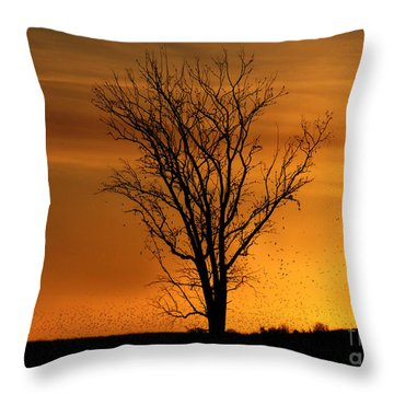 At End Of Day II Throw Pillow