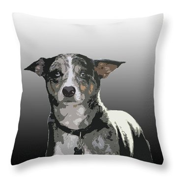 Australian Cattle Dog Sheltie Mix Throw Pillow by One Rude Dawg Orcutt