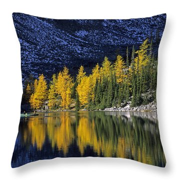 Autumn, Alpine Larch Trees, Lake Agnes Throw Pillow by John Sylvester