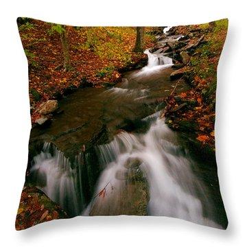 Autumn In New York Throw Pillow