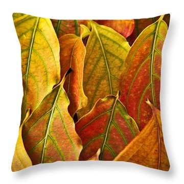 Autumn Leaves Arrangement Throw Pillow by Elena Elisseeva
