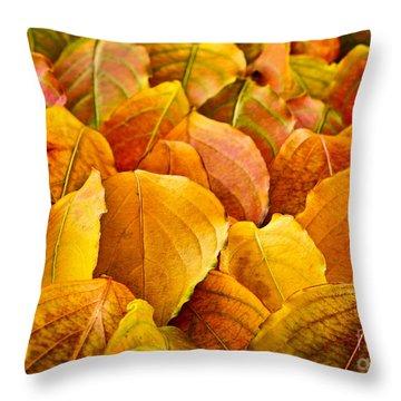 Autumn Leaves  Throw Pillow by Elena Elisseeva