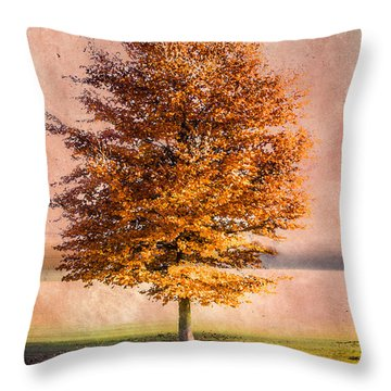 Autumn Light Throw Pillow by Hannes Cmarits