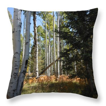 Throw Pillow featuring the photograph Autumn Shadows by Fred Wilson