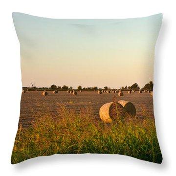 Bales In Peanut Field 2 Throw Pillow by Douglas Barnett