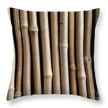 Bamboo Fence Throw Pillow by Yali Shi