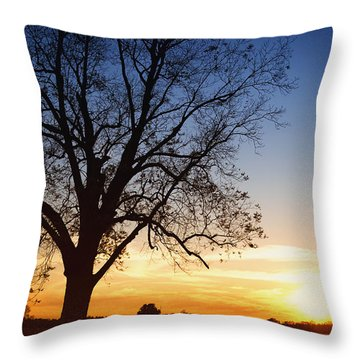 Bare Tree At Sunset Throw Pillow by Skip Nall