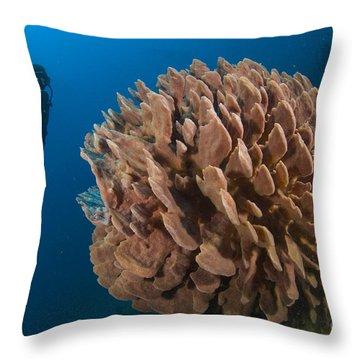 Barrel Sponge And Diver, Papua New Throw Pillow by Steve Jones