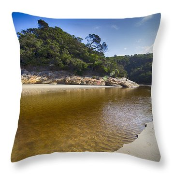 Beach Erosion Throw Pillow