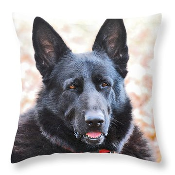 Throw Pillow featuring the photograph Bear by Margaret Palmer