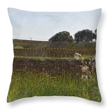 Beautiful California Vineyard Framed With Flowers Throw Pillow