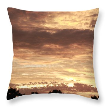 Beautiful Sunset Throw Pillow by Ann Murphy